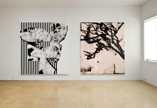 Charline von Heyl, Installation view, 2011