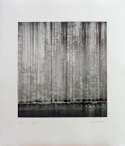 Paul Winstanley, Veil 1, 2008, Hand-drawn sugar lift aquatints with photo-etching