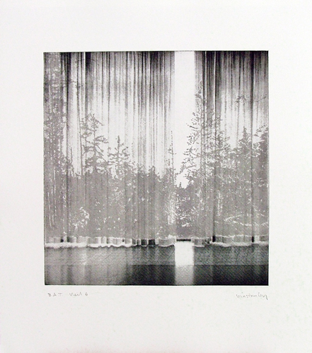 Paul Winstanley, Veil 6, 2008, Hand-drawn sugar lift aquatints with photo-etching