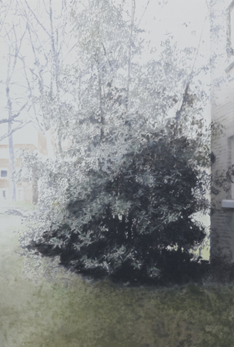 Paul Winstanley, Evergreen in the Grounds, 2010, Oil on linen, 72.05 x 48.03 in., 183 x 122 cm