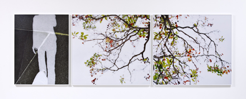 Uta Barth, Untitled, 2010, Mounted color photographs, 3 panels; 41 1/4 x 32 1/4 in, 41 1/4 in x 46 1/2 in, 41 1/4 in x 46 1/2 in.