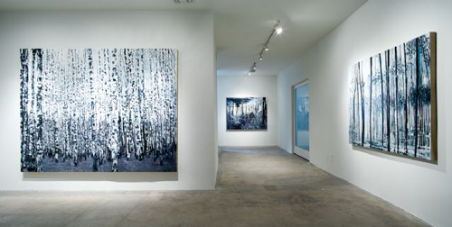Kirsten Everberg, Installation view, 2008