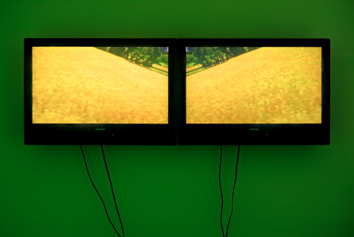 Diana Thater, Ginger Kittens, 1994, Two flat panel monitors