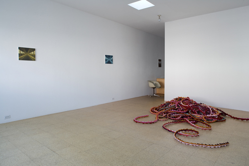 I Don't Do Nature, Installation view, 2007