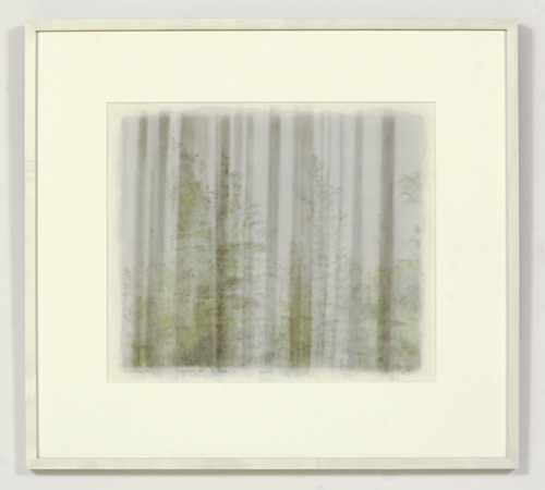 Paul Winstanley, Window ont he Pines 2, 2005, Watercolor, 43 x 51 cm