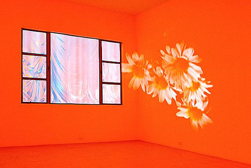 Diana Thater, Pink Daisies, Amber Room, 2003, Video projectors, DVD players, lights