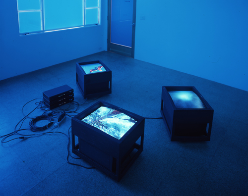 Diane Thater, Moonlight Blue Room (the sky is unfolding under you), 2001