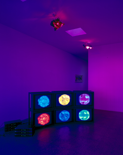 Diana Thater, 6 Suns (Installation view), 2000
