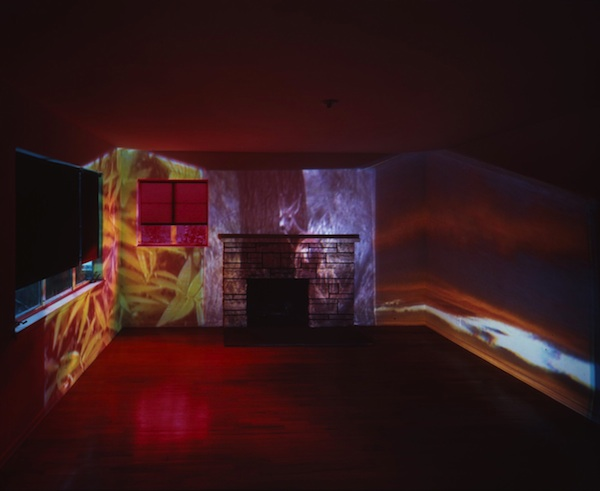 Diana Thater, Abyss of Light, Installation view, 1993