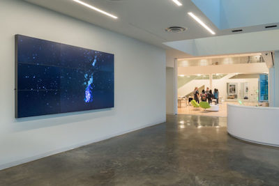 Installation view of Diana Thater's The Starry Messenger, 2014, at the Moody Center for the Arts, 2017. 9-monitor video wall. Courtesy the artist and David Zwirner, New York/London. Photo Nash Baker