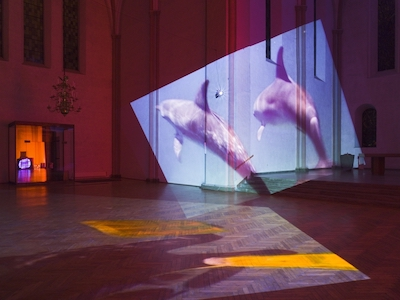 Diana Thater, Delphine, 1999. Installation view, Kulturkirche St. Stephani, Bremen, Germany, 2009. Courtesy the artist and David Zwirner, New York/London. Photo by Roman Mensing. © Diana Thater