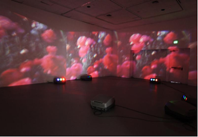 Diana Thater,  Wicked Witch , 1999; Video installation; Collection OCMA.