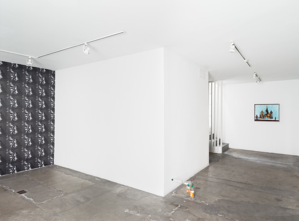 Blake Rayne, Burn It Clean, 2018. Installation view 1301PE.