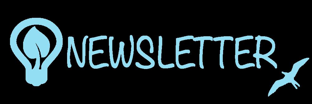 newsletter banner light blue.png