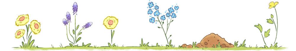 flowers banner.jpg