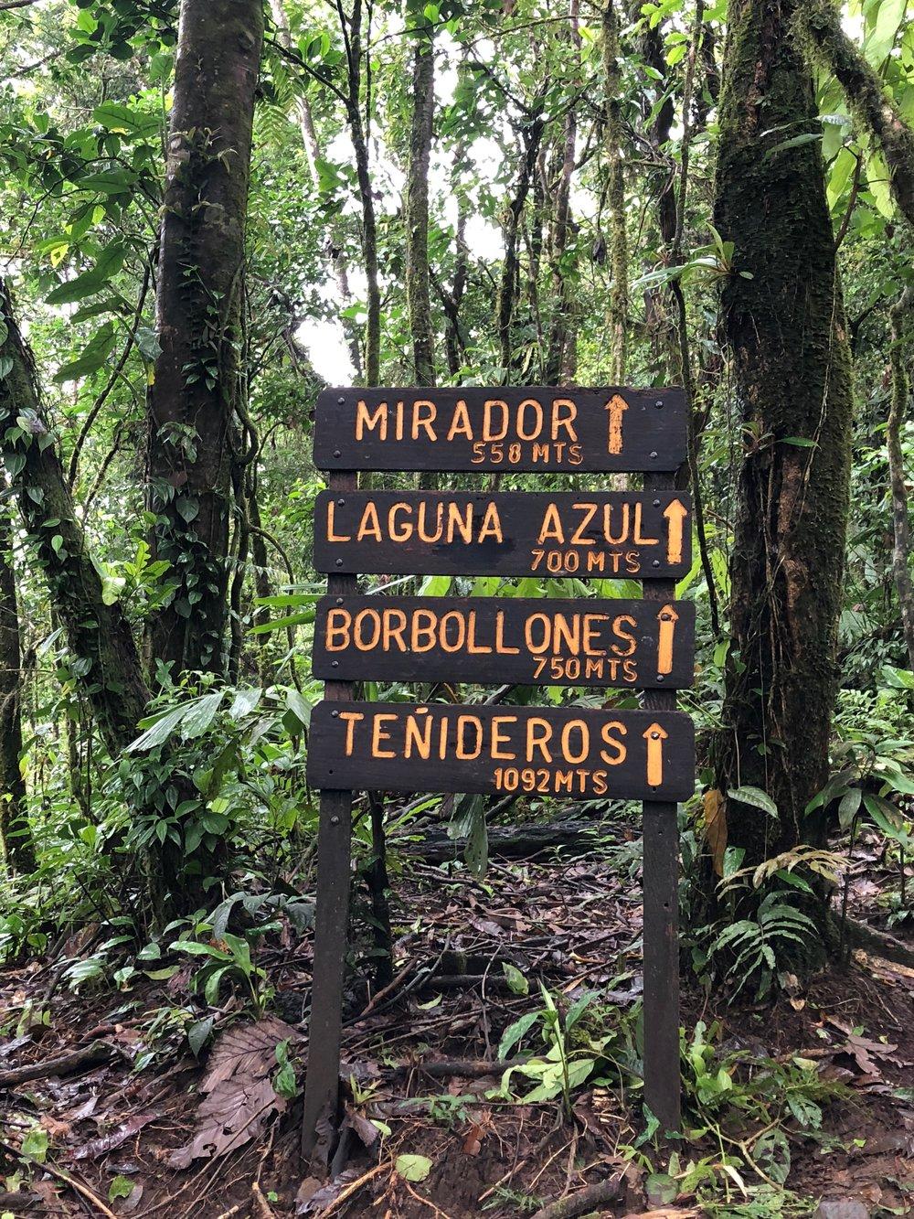 Hike at Parque Nacional Volcán Tenorio