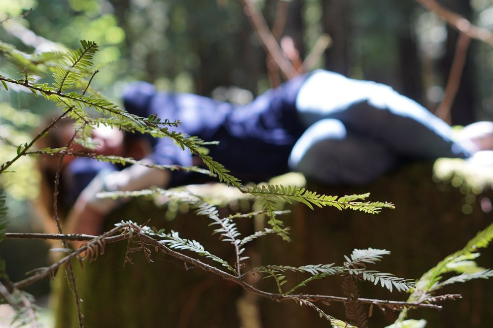 woman lying on log ANFT.jpg