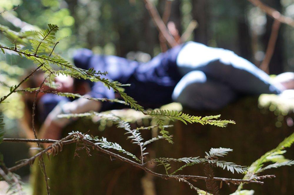 woman lying on log ANFT.jpg
