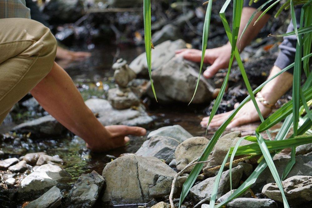 hands in stream rocks ANFT.jpg