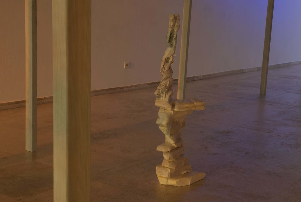 2018 installation view at Patio Herreriano Museum Valladolid ES photo Esther Gatón