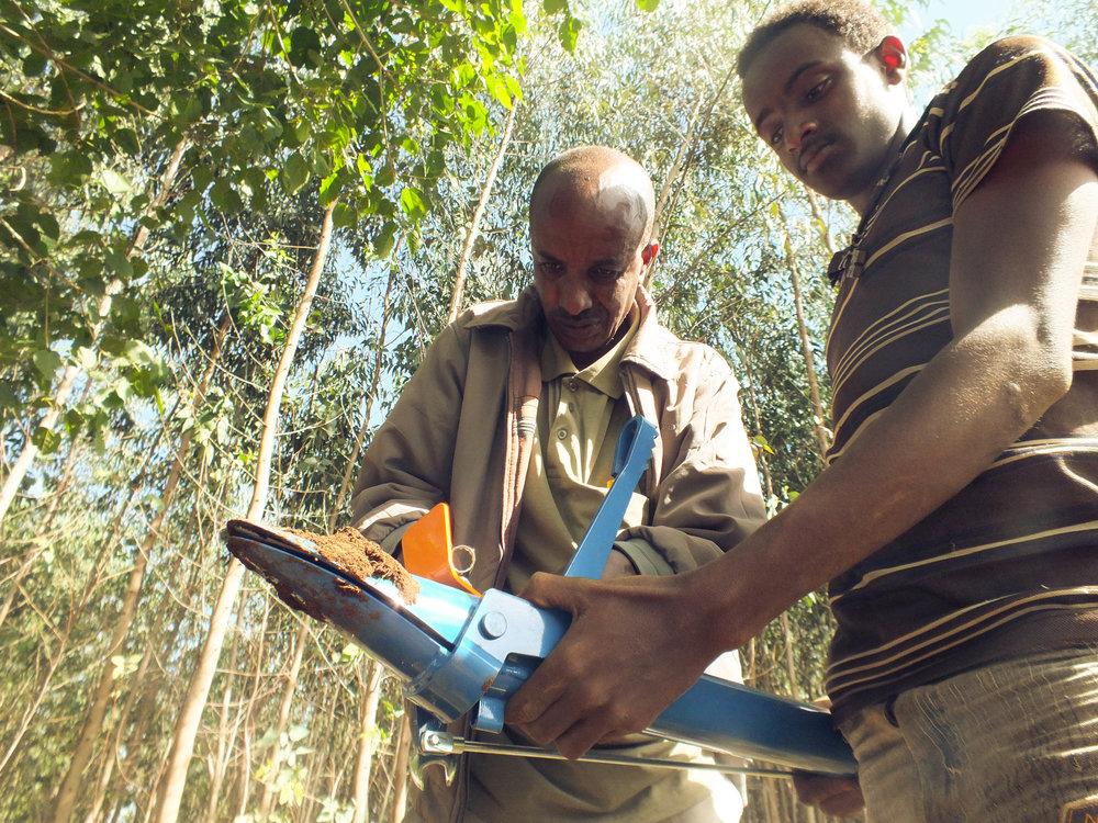 Trädplantering i Etiopien med ett finländskt planteringsrör
