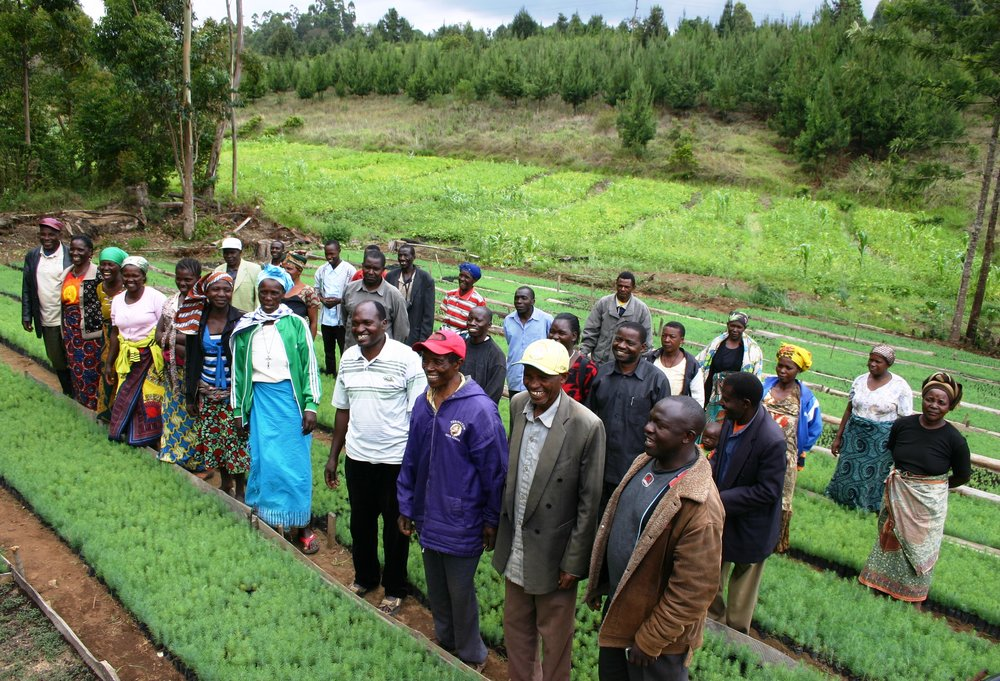 Hälsningar från plantskolan i Njombe i Tanzania!