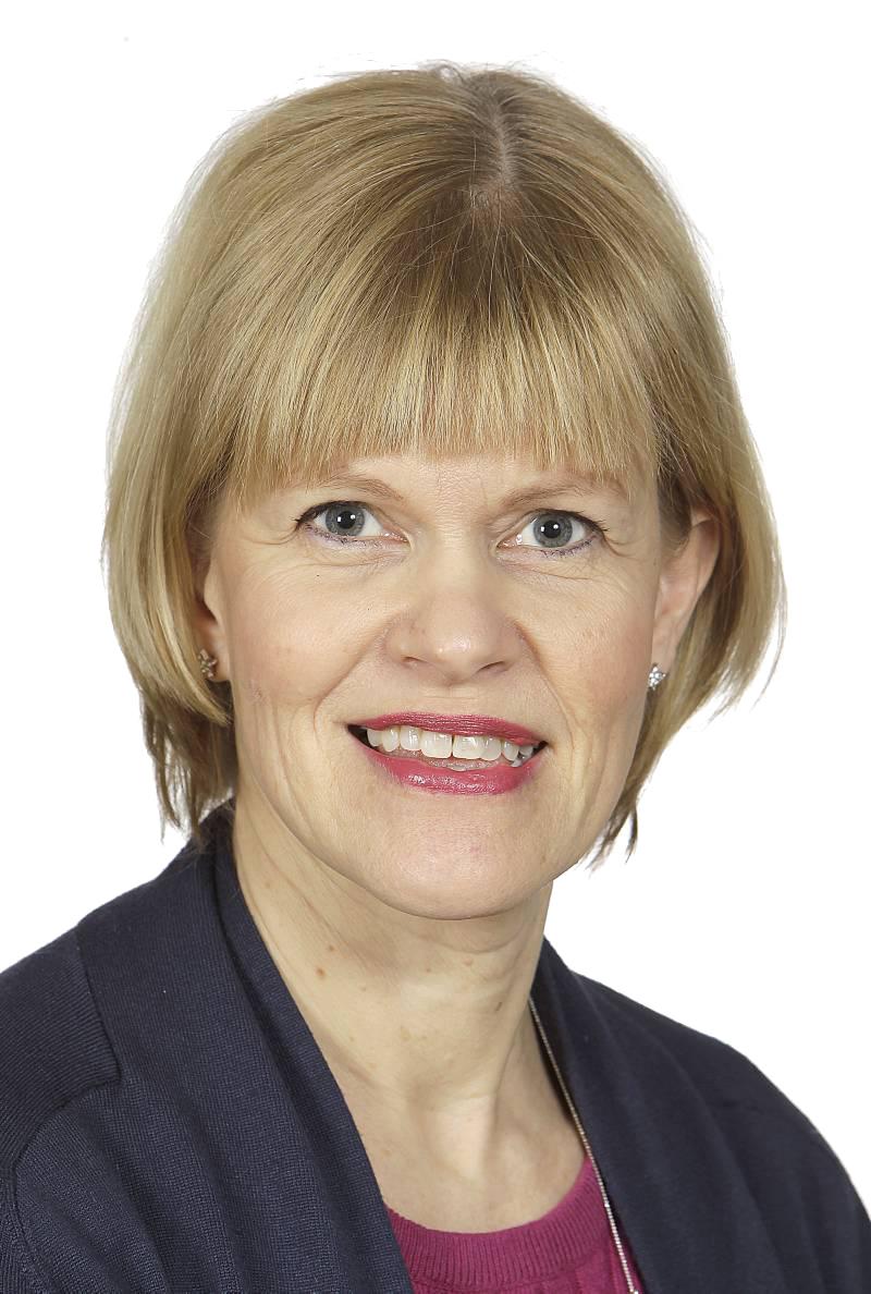 Tiina Huvio, ohjelmajohtaja