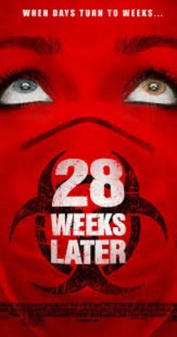 28 weeks.jpg