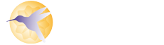 We Lead | Global Round Table Leadership