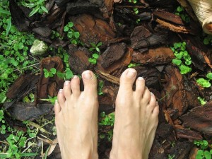 Feet-in-woods-300x225.jpg
