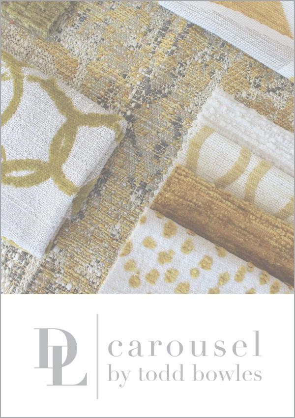 carousel_box title_NEWEST_2.jpg