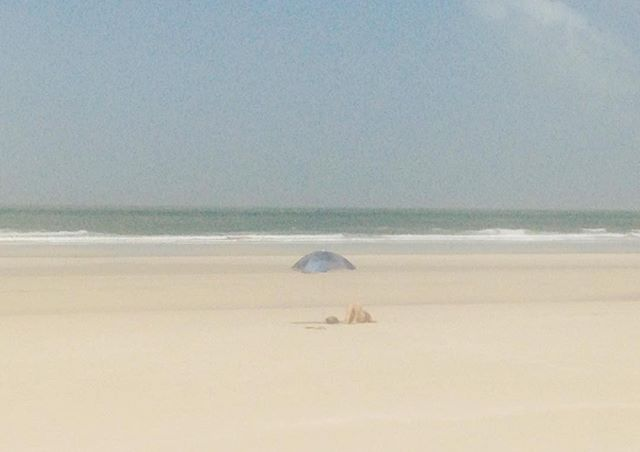 #algodoal #para #brazil #beach #island
