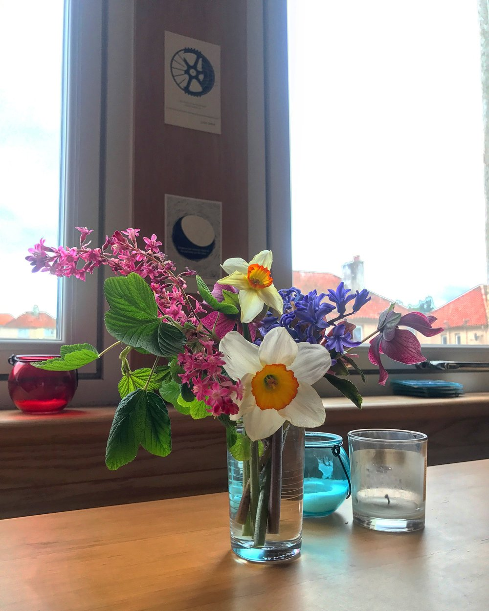 Flowers from my garden that the last tenant planted.