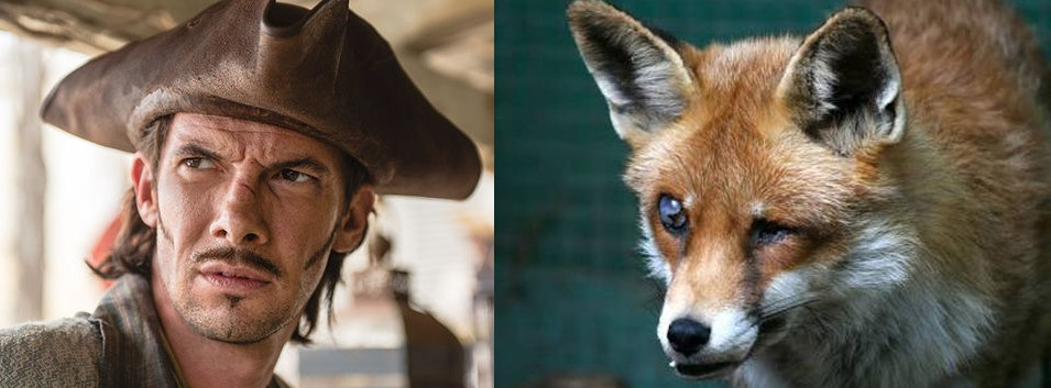 Toby Schmitz as Jack Rackham and the fox he put in his dressing room for reference.