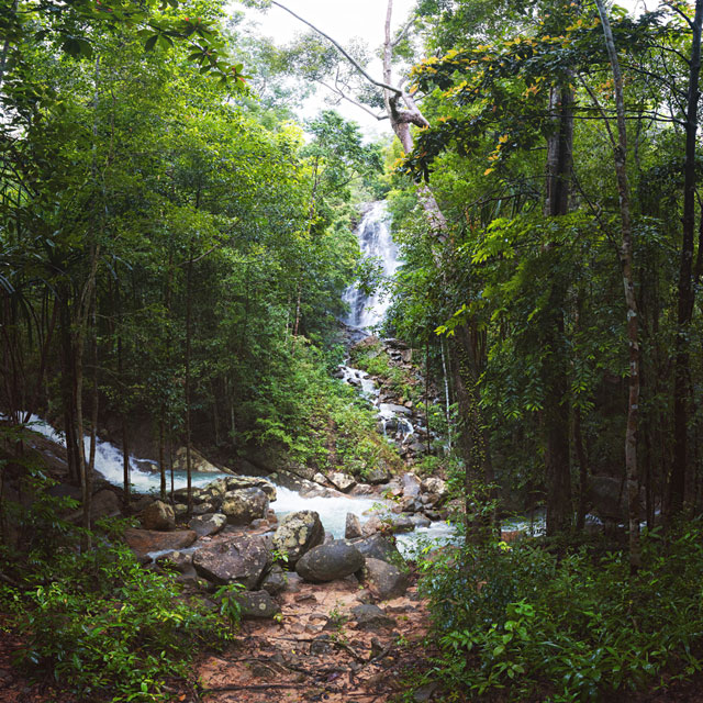 After the hike, we will visit the Phaeng Waterfall for a refreshing swim in the crystal clear pools.