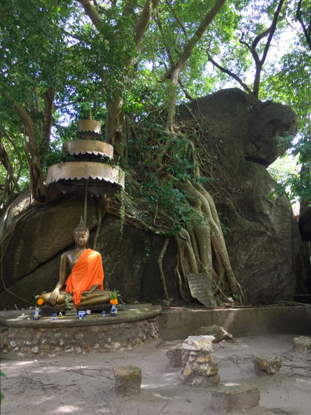 We will learn about Thai Buddhism on a tour of Wat Kohm Tahm, a mountaintop monastery. After the tour, we will do our first walking meditation session in the jungle.