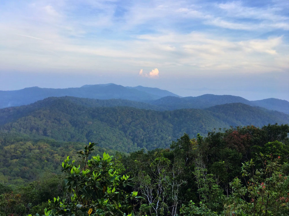 The untouched wilderness of Than Sadet National Park on the eastern half of Koh Phangan.After the hike, we will swim in the Khao Ra waterfall that flows from the cloud forests.