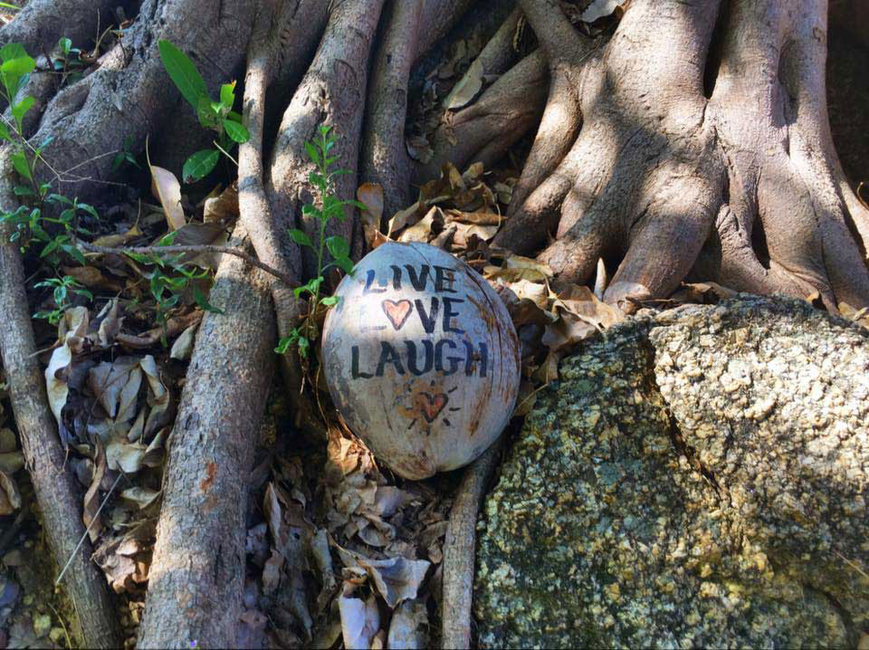 Live. Love. Laugh. We think that's great advice. Throughout Haad Thien and Why Nam, you will find inspirational coconuts everywhere.