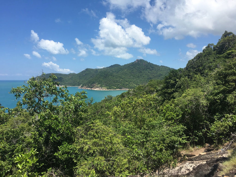 The beautiful jungle trail to Bottle Beach, which gets its name from the plastic bottles that mark the way through the dense jungles of Than Sadet National Park.