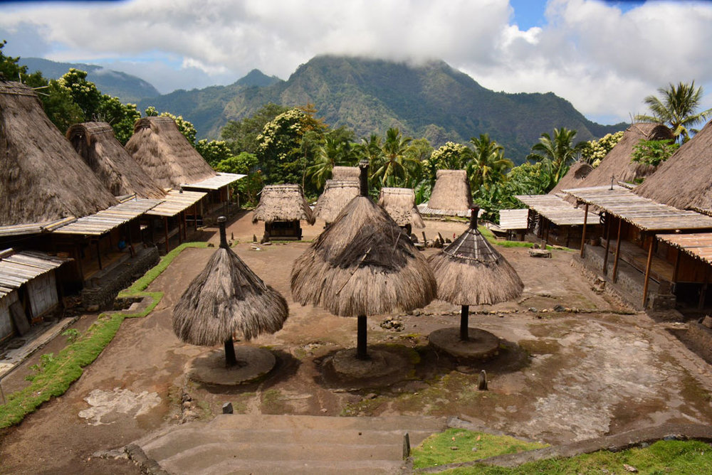 On Flores Island, we will trek up into the mountains to the Gurusina indigenous Ngada village to learn about their traditional way of life.