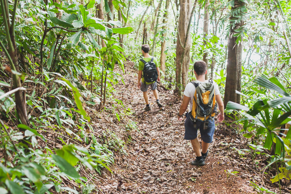 We will hike through the forest and practice Sensory Immersion Meditation in some of Bali's wildest ecosystems.