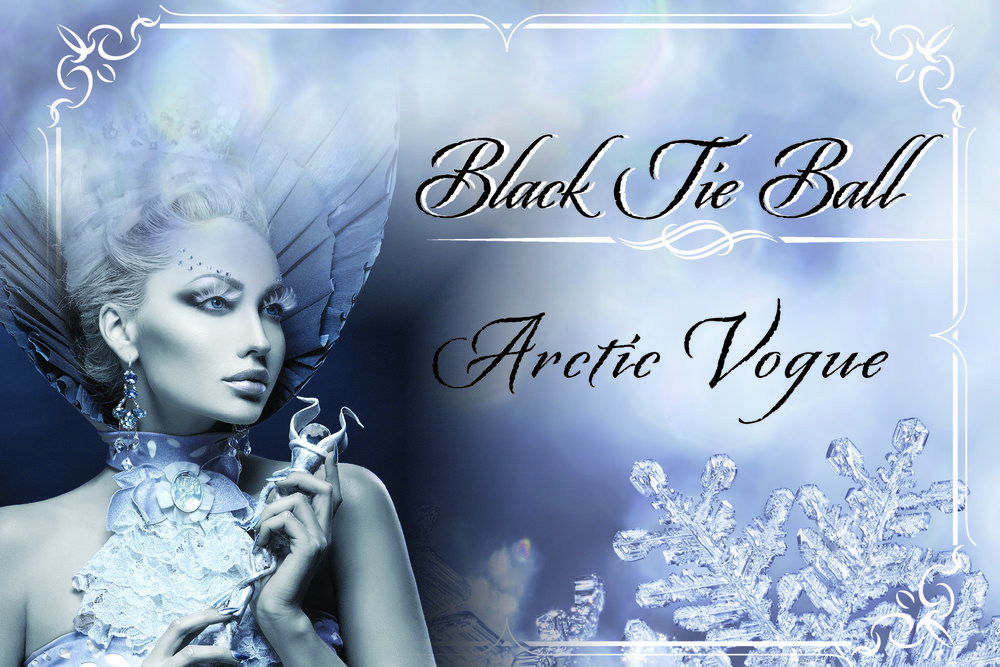 Arctic Vogue Invitations.jpg