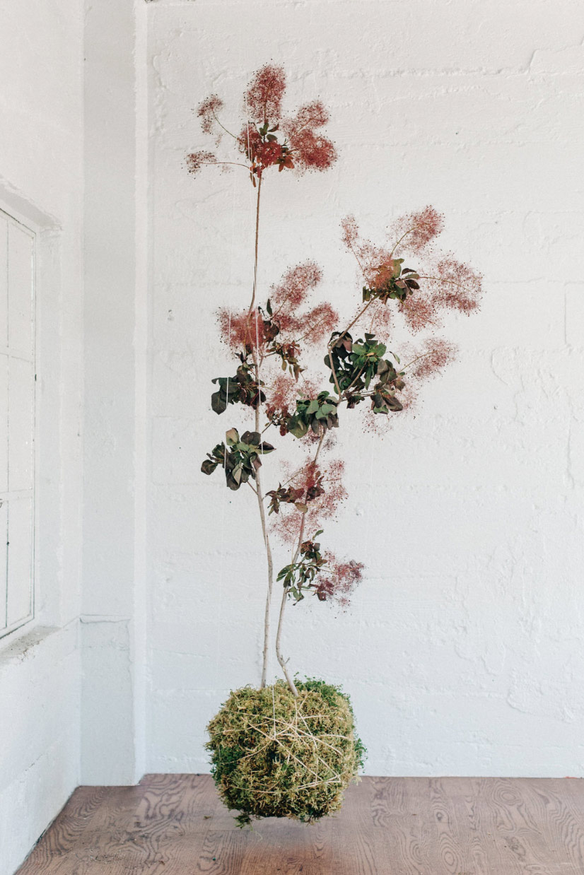 Evocative Flora
