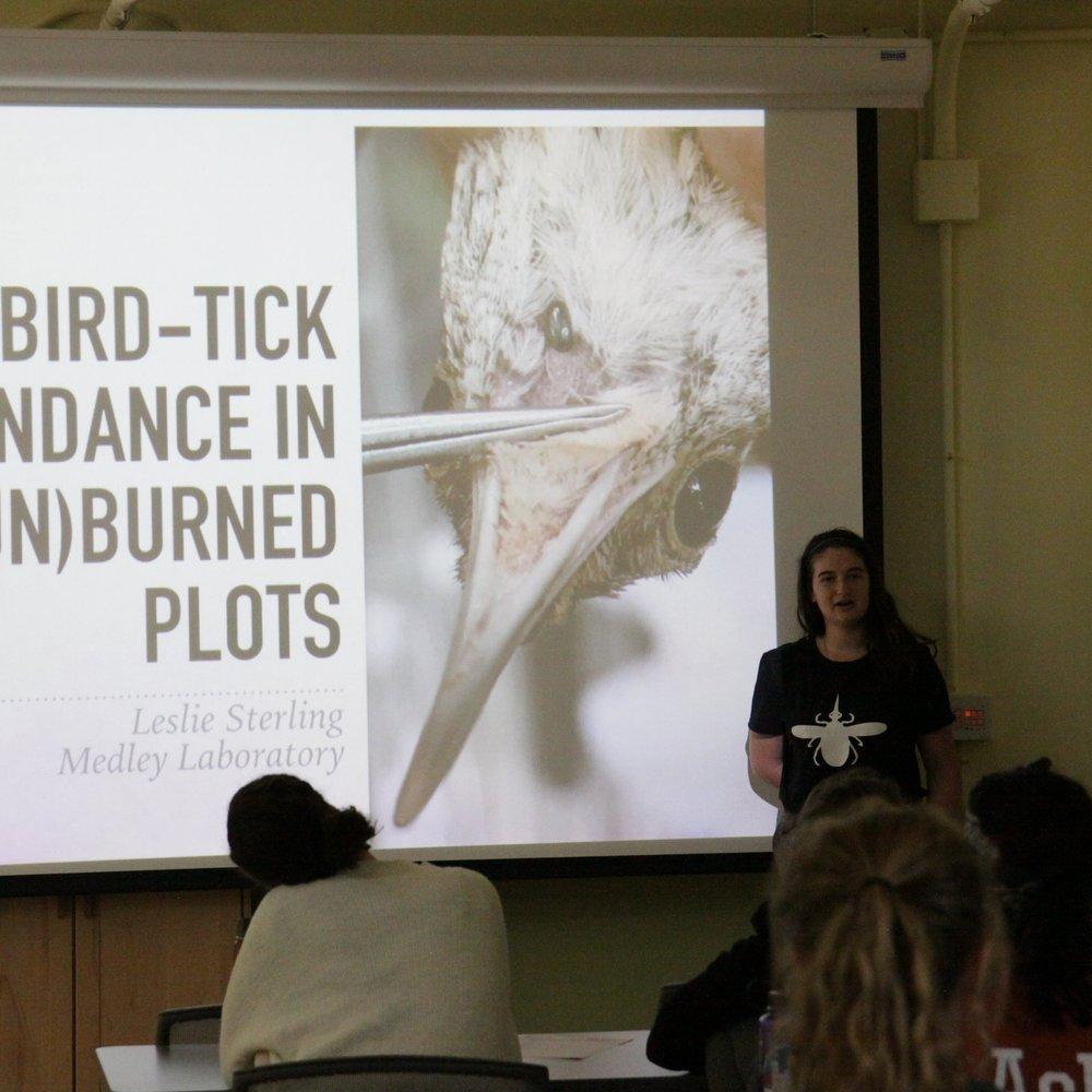 Leslie Sterling  Tyson Undergraduate Fellow '17 Washington University '19  Project: Bird-tick abundance in burned and unburned forest plots
