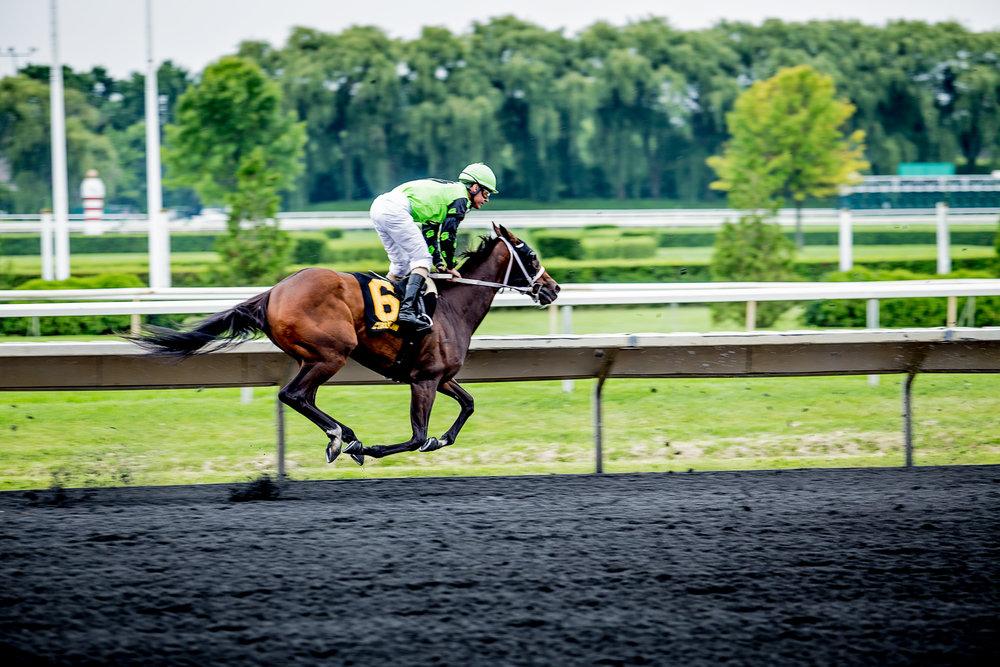 Race_Horses_283_2000x2000.jpg