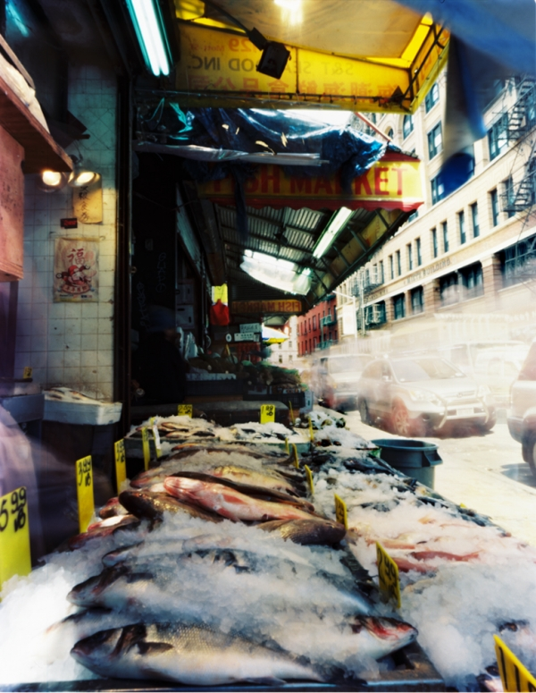 Fish Market, Mott Street between Hester and Grand  June 8, 2012  Inquire