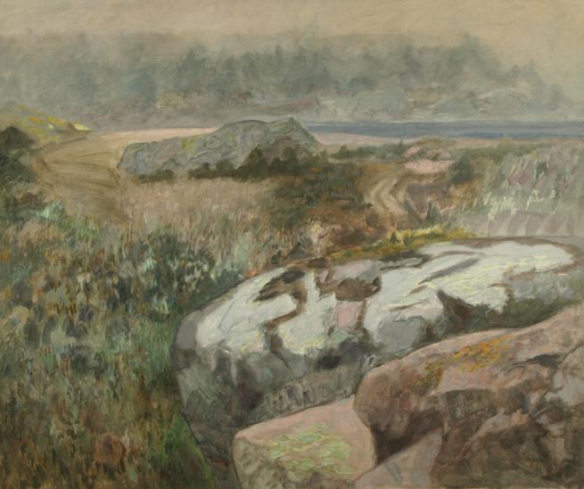 Landscape with rocks and vegetation