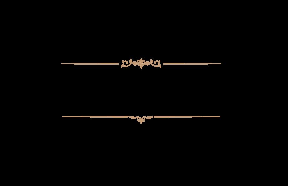HYPE_SHIP_Logo.png