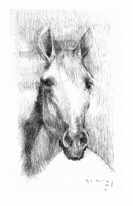 Tim Jaeger, Study, Horse I, 2014