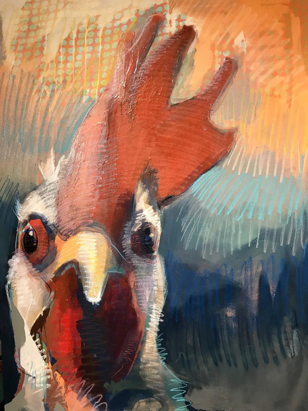 CHICKENS + BIRDS -